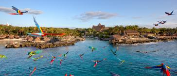 Xcaret Tour + Transport